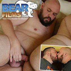 Bear Films